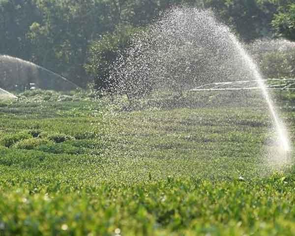 宜宾地埋喷灌