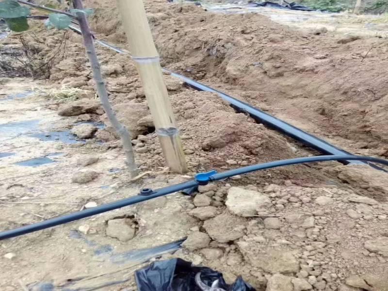 隆尧县高效节水灌溉项目